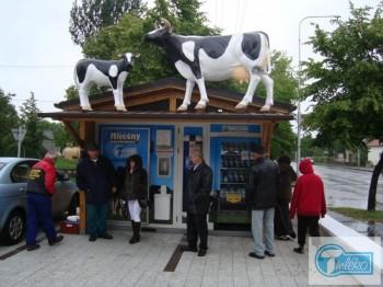 Okolí automatu